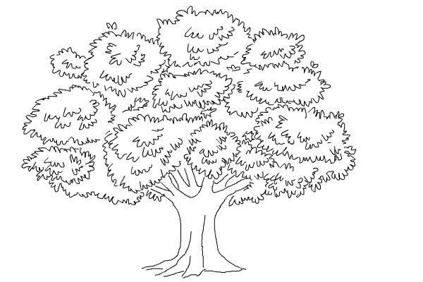 Cara Menggambar Pohon