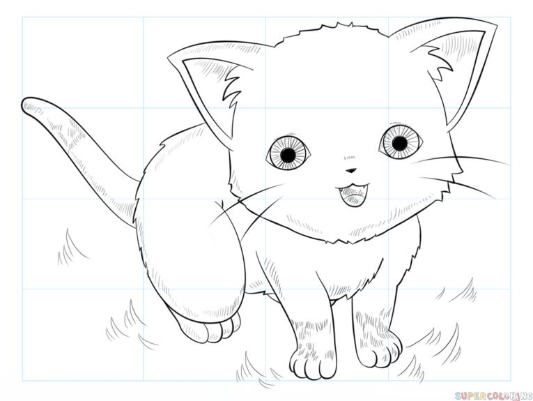 Cara Menebalkan Gambar Kucing