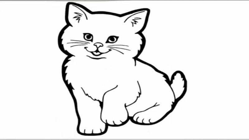 Kucing Lucu Cara Menggambar Kucing Majalah Cat Dog