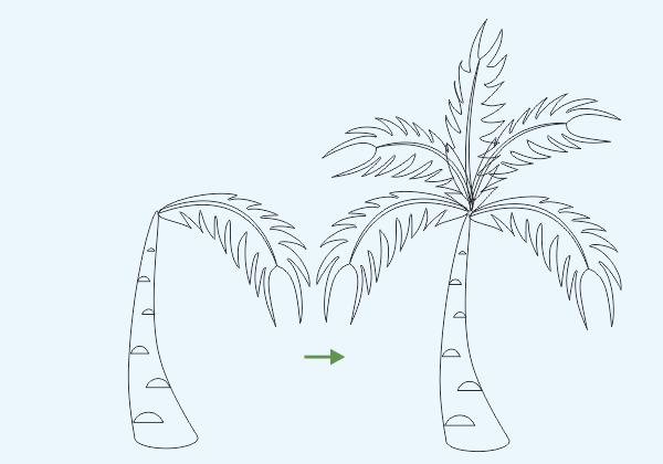 Merangkai Gambar Ranting Pohon Kelapa