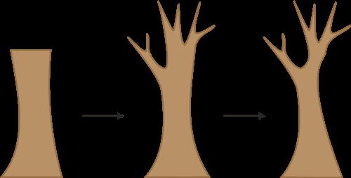 Gambar Dasar Pohon
