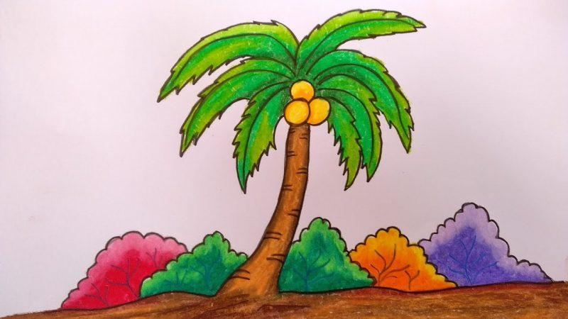 Mewarnai Gambar Daun Pohon Kelapa
