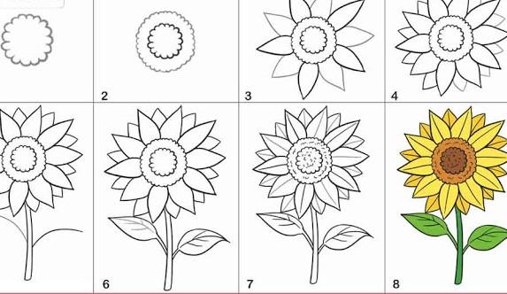 Cara Menggambar Bunga Mawar Melati Indah Terlengkap Terbaru